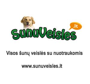 Šunų veislės - daugiau nei 300 šunų veislių su nuotraukomis