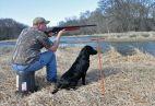 Šiek tiek medžioklinių šunų istorijos (1.)
